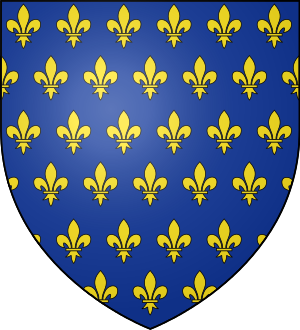 Blason de la famille maison de France